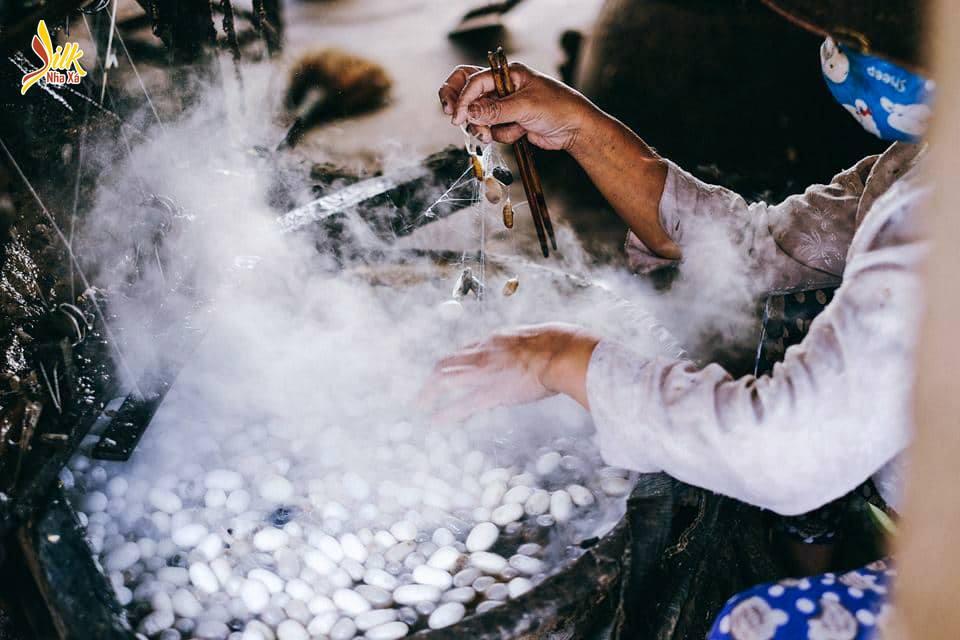 Người thợ tỉ mỉ xử lý kén tằm trước khi kéo sợi